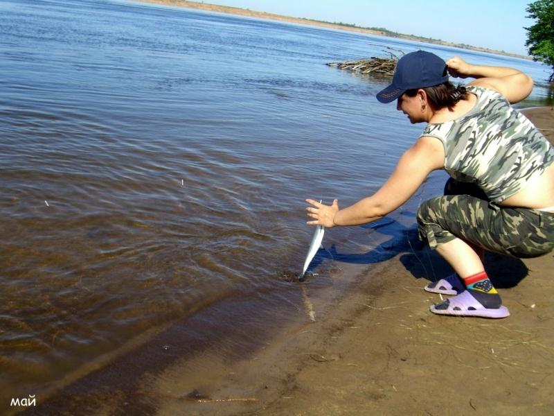 НИЖНЯЯ ВОЛГА Рыбалка в Цаган-Аман Ловля ЩУКИ и СУДАКА (Часть 1 из 4)